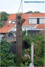 Bomen vellen Zeeland