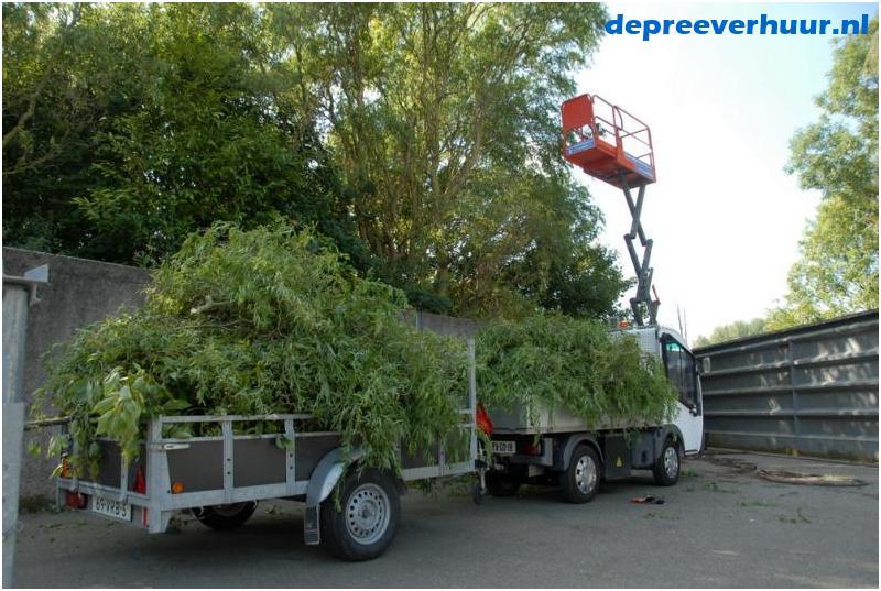 Bomen snoeien Zeeland