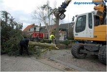 Bomen rooien in Geersdijk